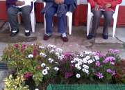 Hogar de ancianos pb, geriátrico, asilo: norte de quito el precio que busca  0992784945