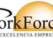 WorkFo rce S.A. Limpieza, mantenimiento y jardineria