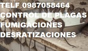 Telf 0996818473 control de plagas fumigaciones