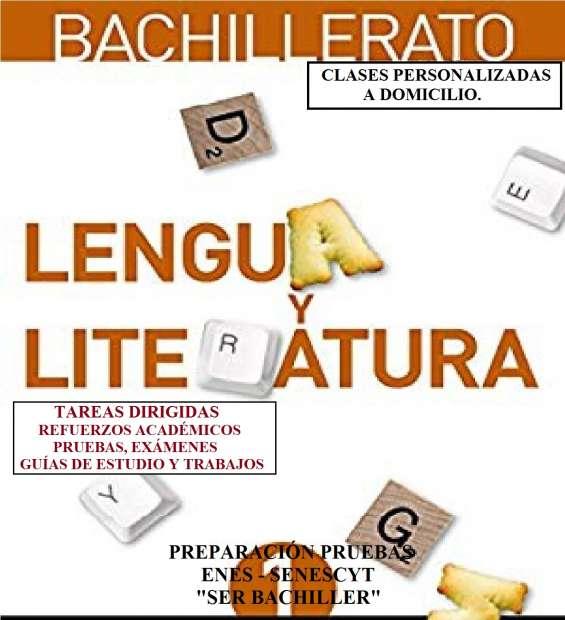 Tareas dirigidas, guías de estudio y trabajos en lengua-literatura