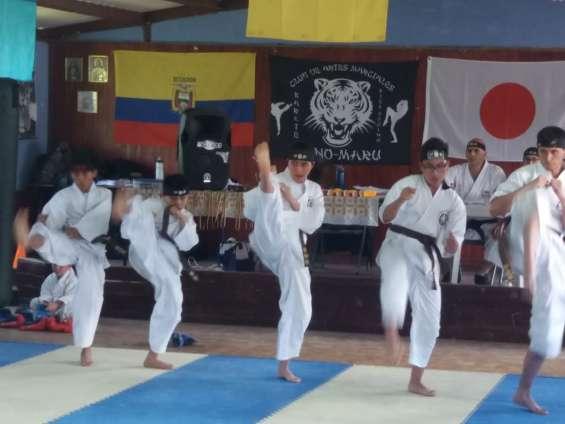 Cursos vacacionales defensa personal - karate