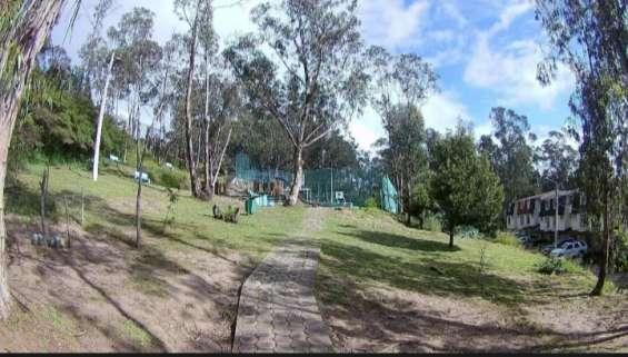 Grandes áreas verdes, canchas y jardines